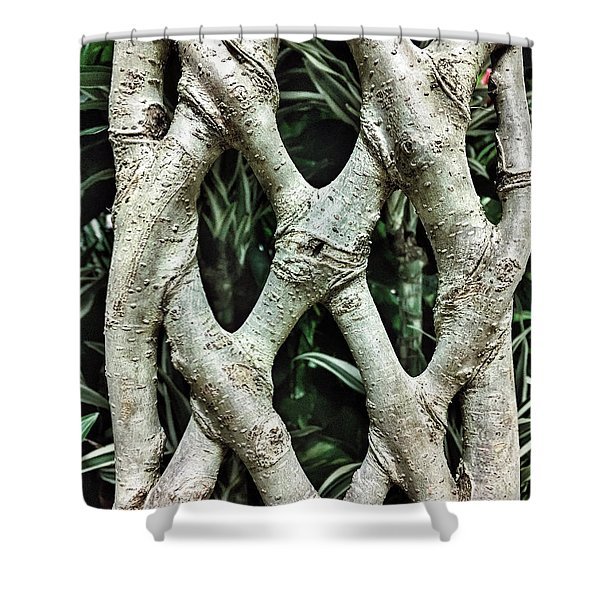 A Plant Trunk Shower Curtain