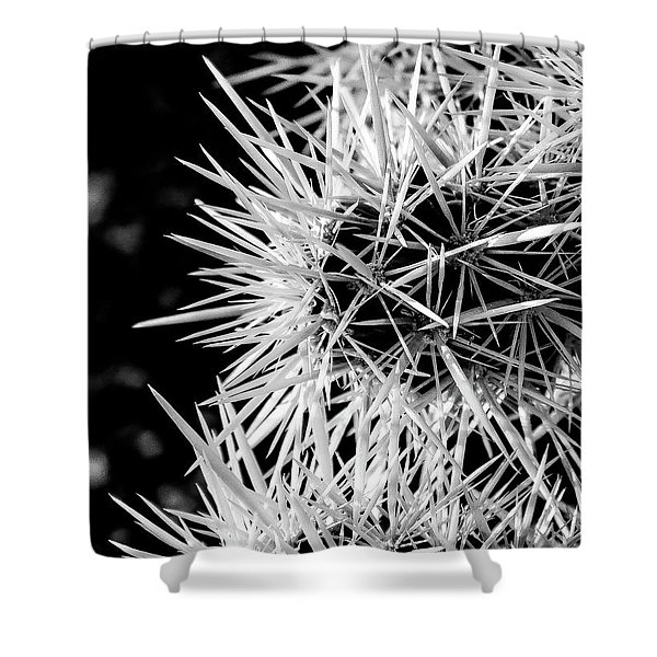 A Prickly Subject Shower Curtain