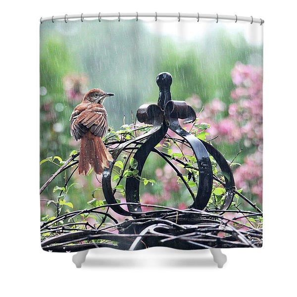 A Rainy Summer Day Shower Curtain