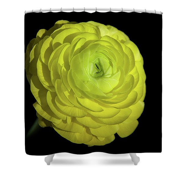 A Ray Of Light Shower Curtain