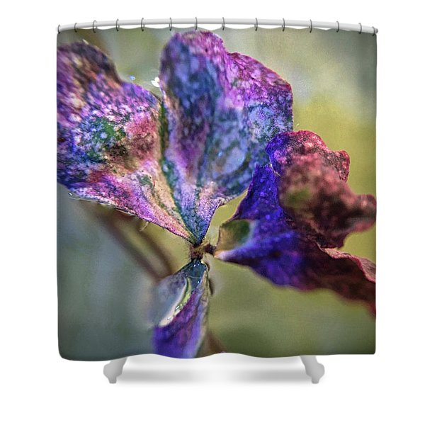 A Real 4 Leaf Clover Shower Curtain