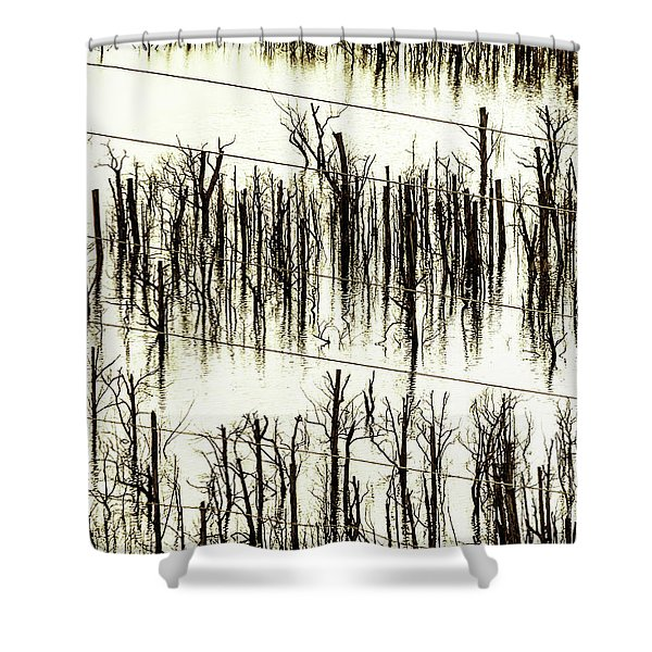 A Reflection Shower Curtain