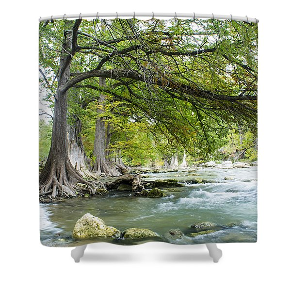 A River Under Bald Cypress Trees Shower Curtain
