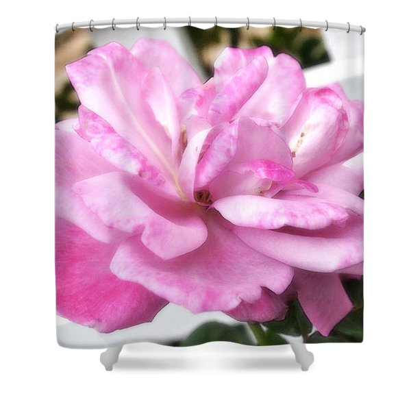 A Rose For Cyndee Shower Curtain