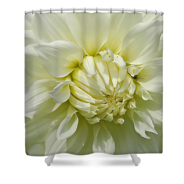 A Secret Visitor Shower Curtain