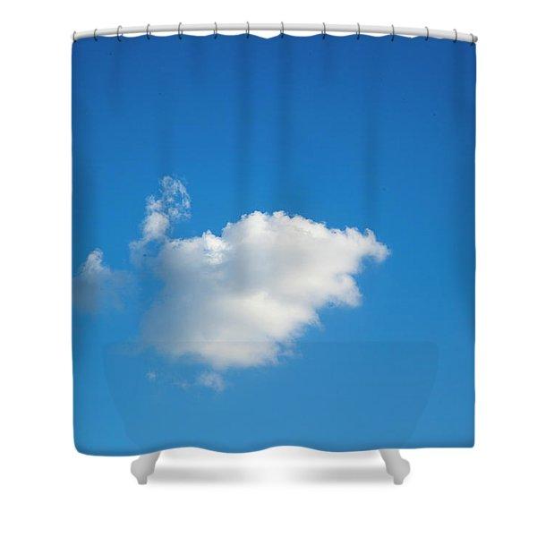 A Single Cloud Shower Curtain