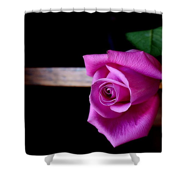 A Single Rose Shower Curtain
