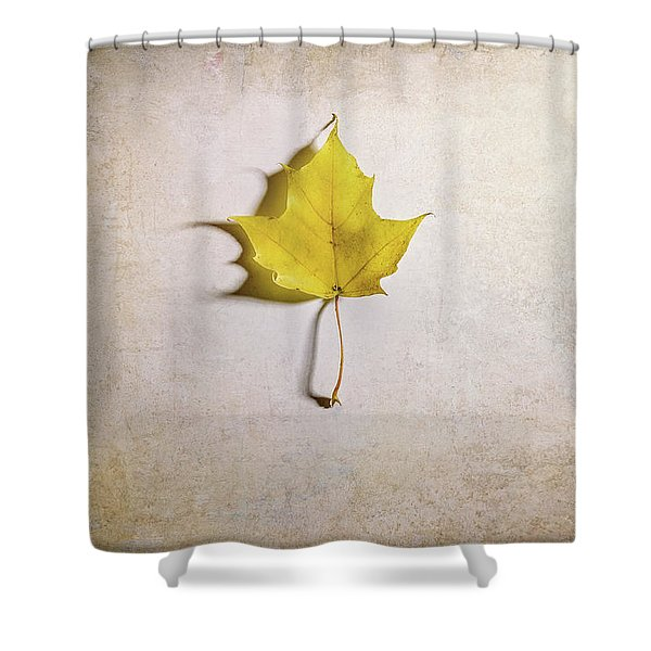A Single Yellow Maple Leaf Shower Curtain