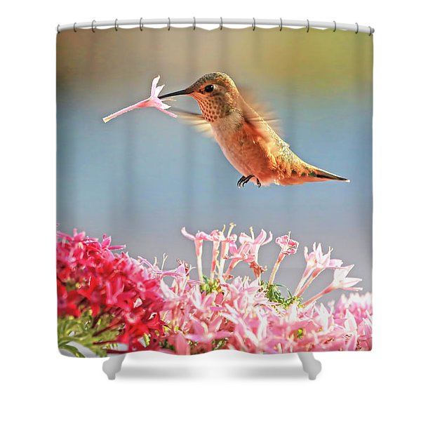 A Sip To Go Shower Curtain