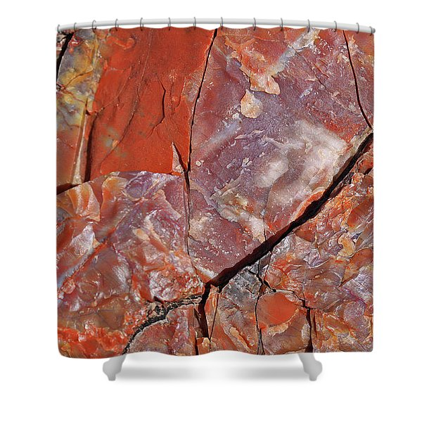 A Slice Of Time Shower Curtain
