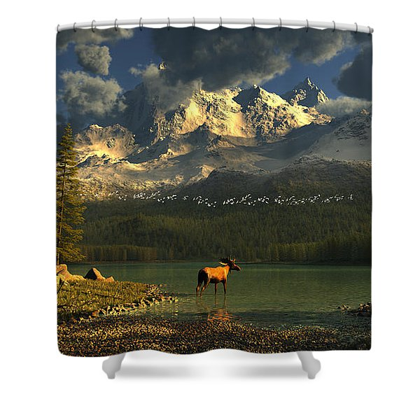 A Small Planet Shower Curtain