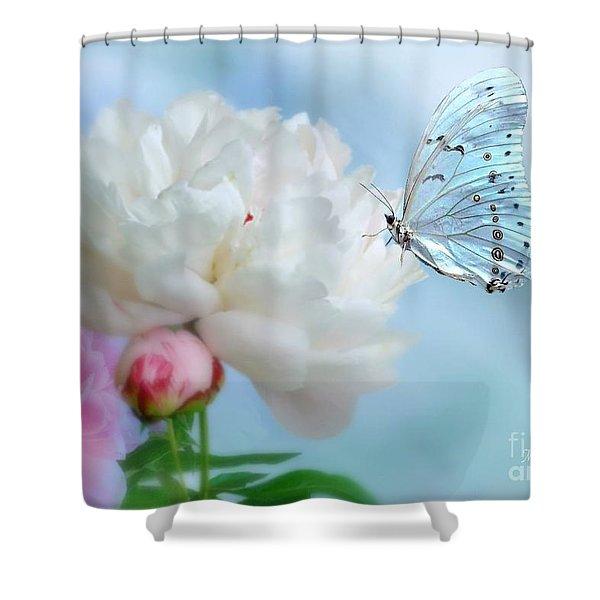 A Soft Landing Shower Curtain