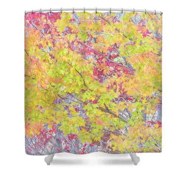 A Splash Of Color Shower Curtain