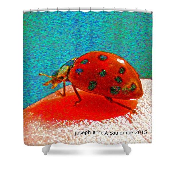 A Spring Lady Bug Shower Curtain