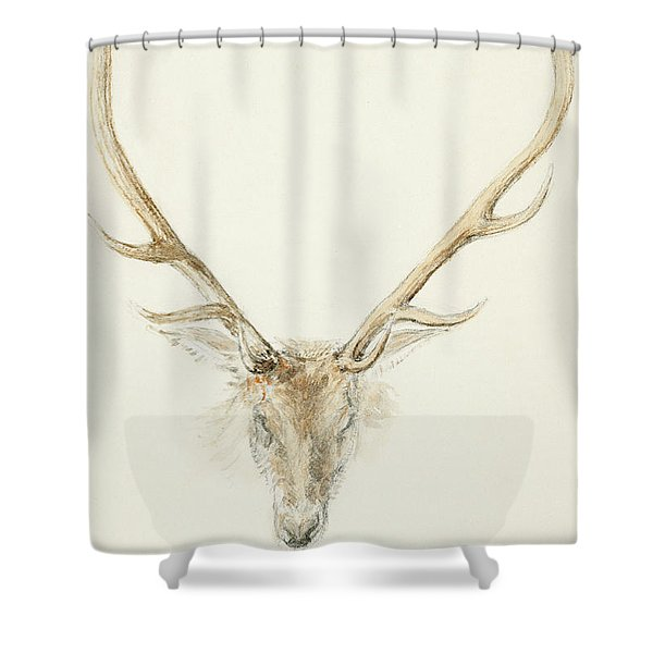 A Stag Shot By John Brown Shower Curtain
