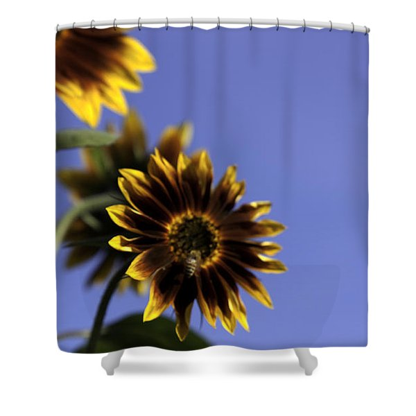 A Summer's Day Shower Curtain