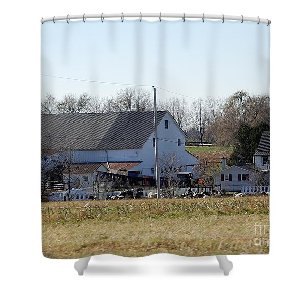 A Sunny November Afternoon Shower Curtain