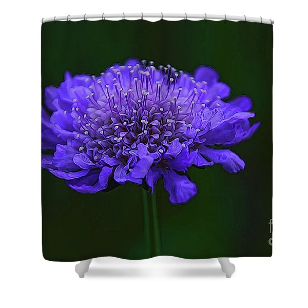 A Sweet Scabiosa Shower Curtain