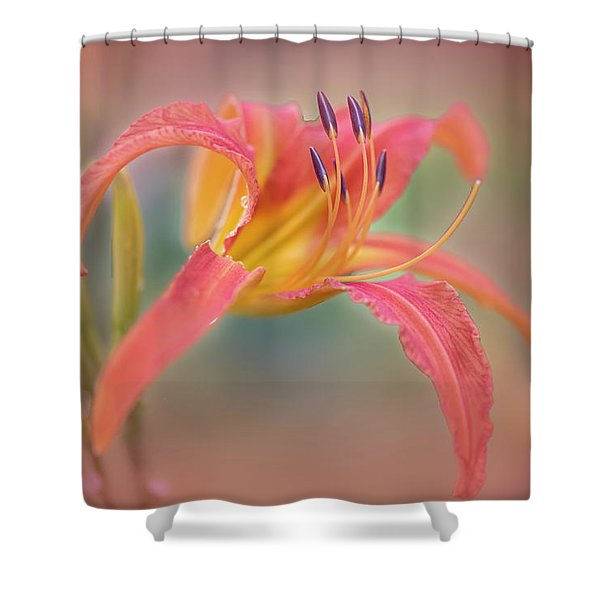 A Thing Of Beauty Lasts Only For A Day. Shower Curtain