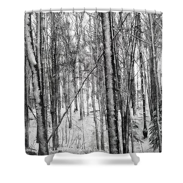 A Tree's View In Winter Shower Curtain