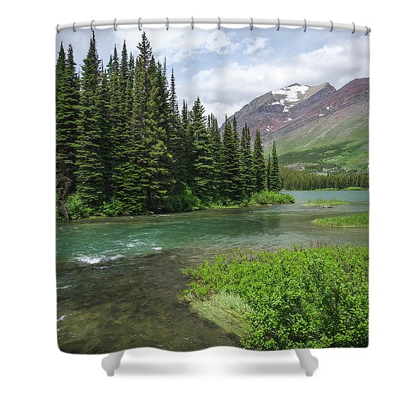 A Walk In The Forest Shower Curtain