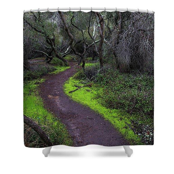 A Windy Path Shower Curtain