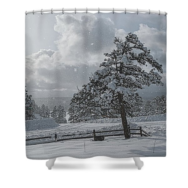 Shower Curtain featuring the photograph A Winter Storm In Pagosa by Jason Coward