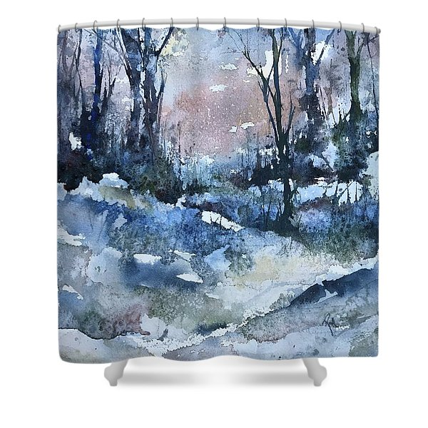 A Winter's Eve Shower Curtain