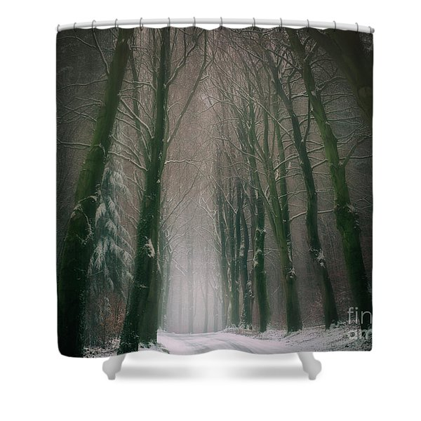 A Woodland Fantasy Shower Curtain
