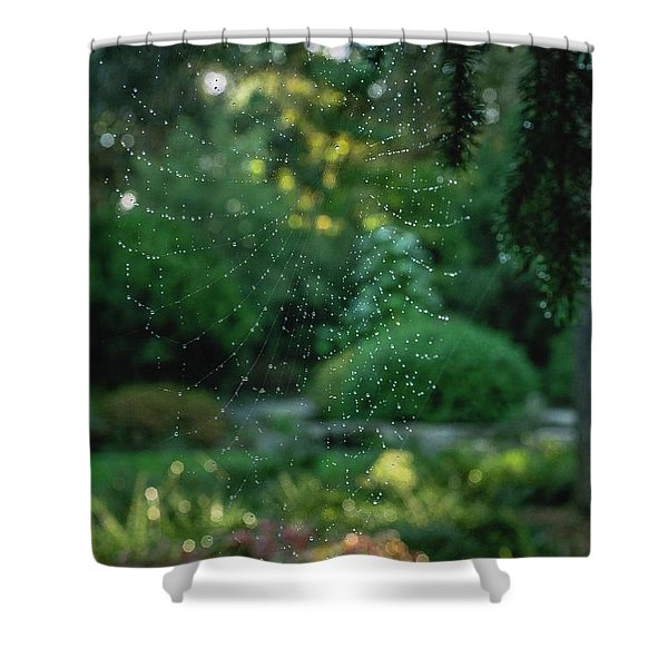 Morning Web Shower Curtain