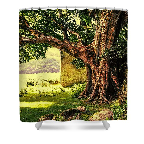 Abandoned Ruins Shower Curtain