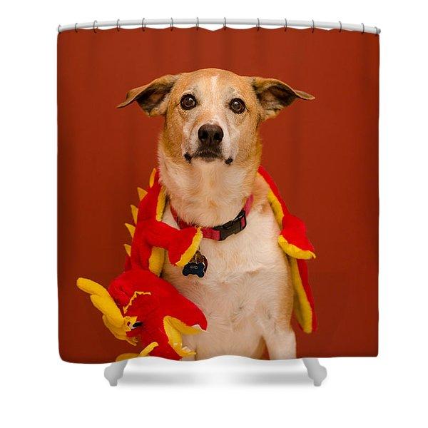 Abbie And A Dragon Shower Curtain