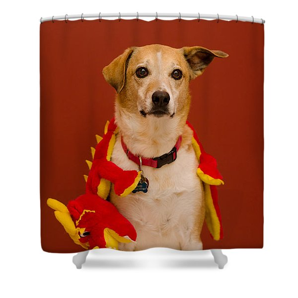 Abbie And Dragon Toy Shower Curtain