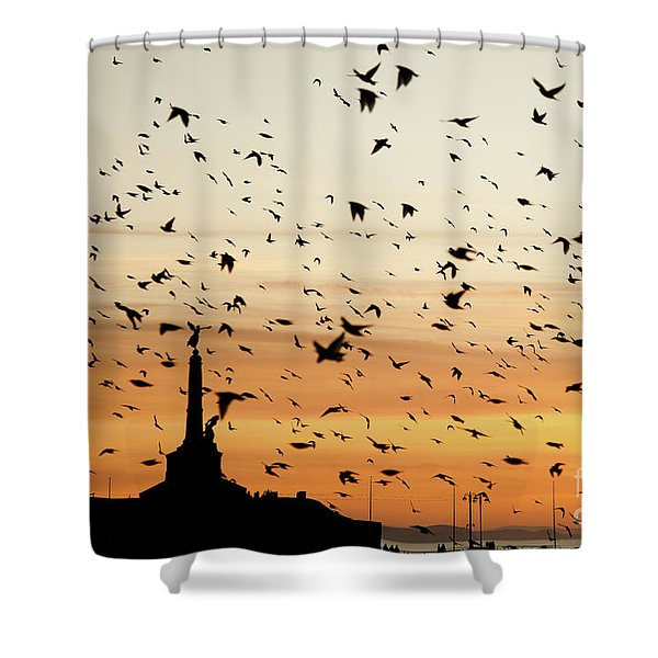 Aberystwyth Starlings At Dusk Flying Over The War Memorial Shower Curtain