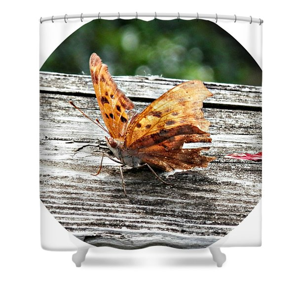 About To Take Flight Shower Curtain