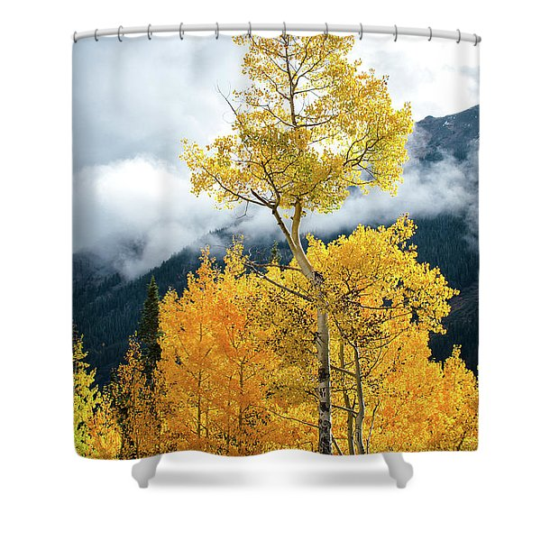 Above The Rest Shower Curtain