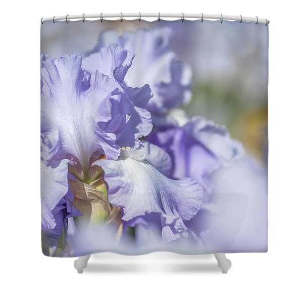 Absolute Treasure 1. The Beauty Of Irises Shower Curtain