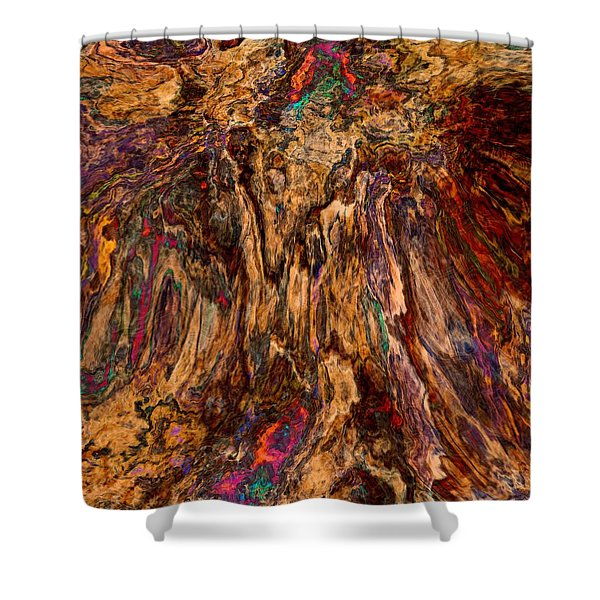 Abstract 013116 Shower Curtain