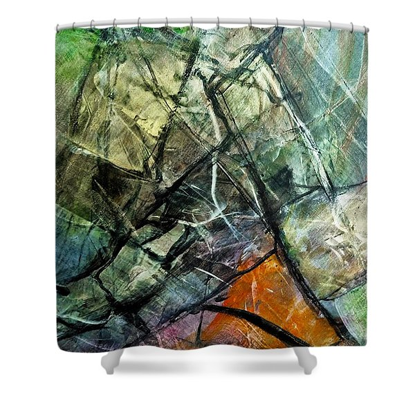 Abstract #323 Shower Curtain