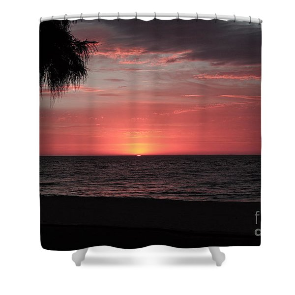 Abstract Beach Palm Tree Sunset Shower Curtain