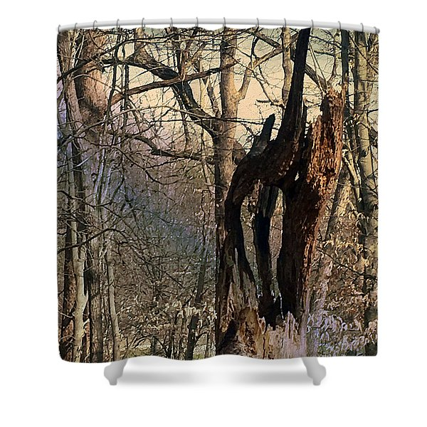 Abstract Dead Tree Shower Curtain