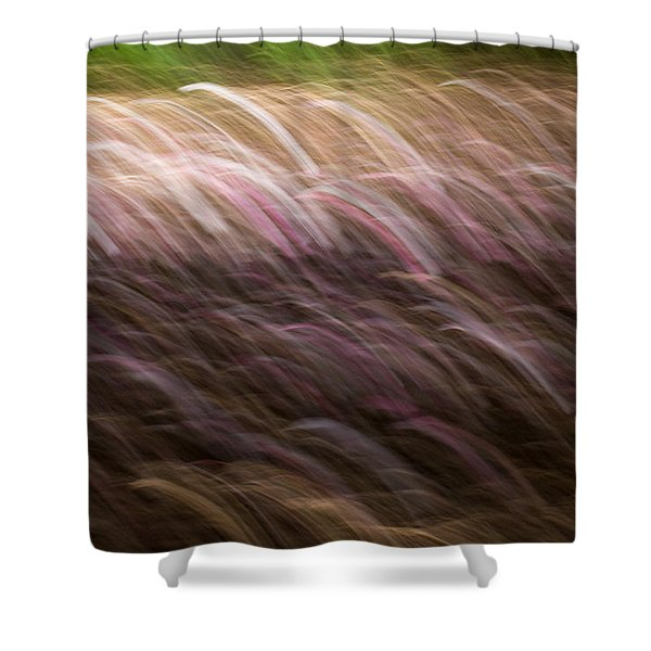 Abstract Magnolias 2 Shower Curtain