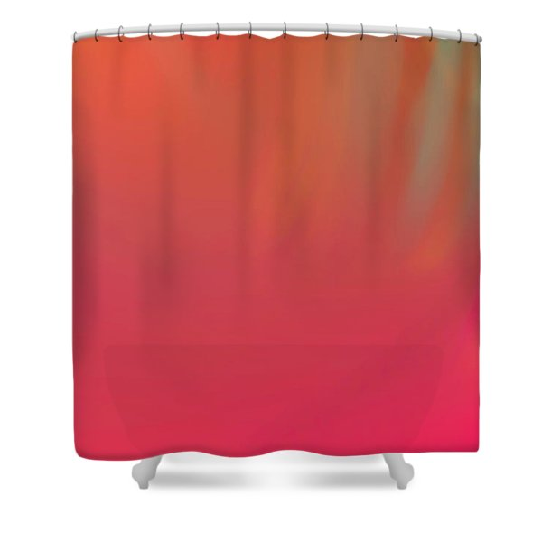 Abstract No. 16 Shower Curtain