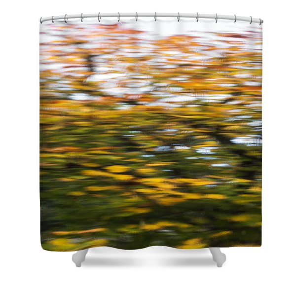 Abstract Of Maple Tree Shower Curtain