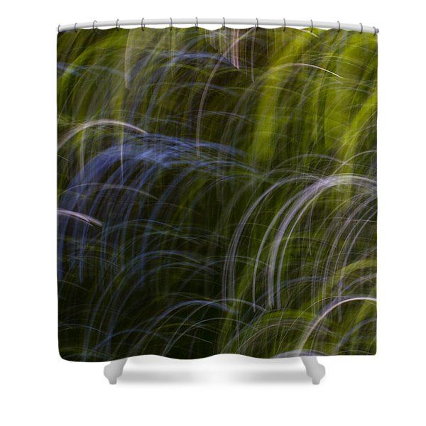 Abstract Trees 3 Shower Curtain