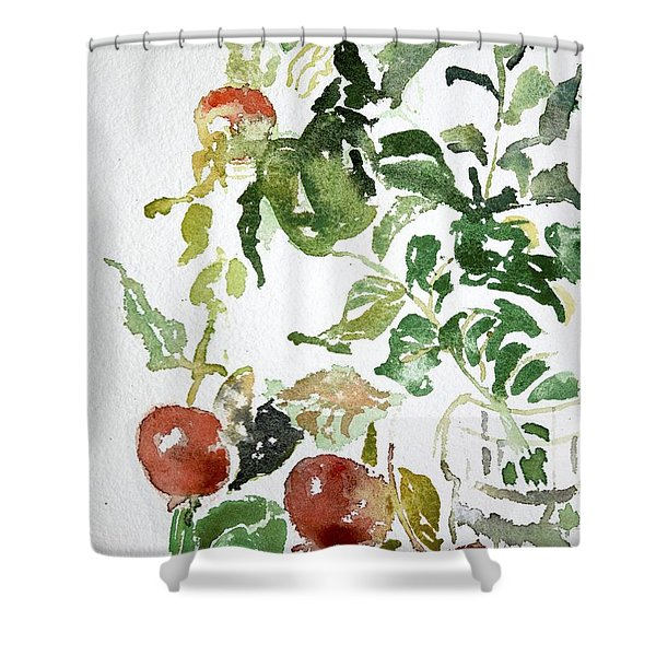 Abstract Vegetables Shower Curtain
