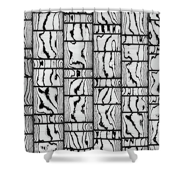 Abstritecture 18 Shower Curtain