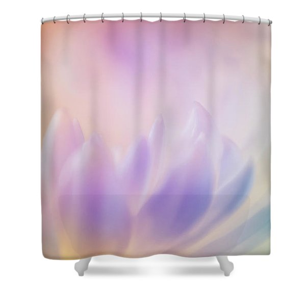Adding Color Shower Curtain