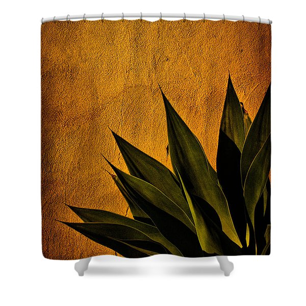 Adobe And Agave At Sundown Shower Curtain