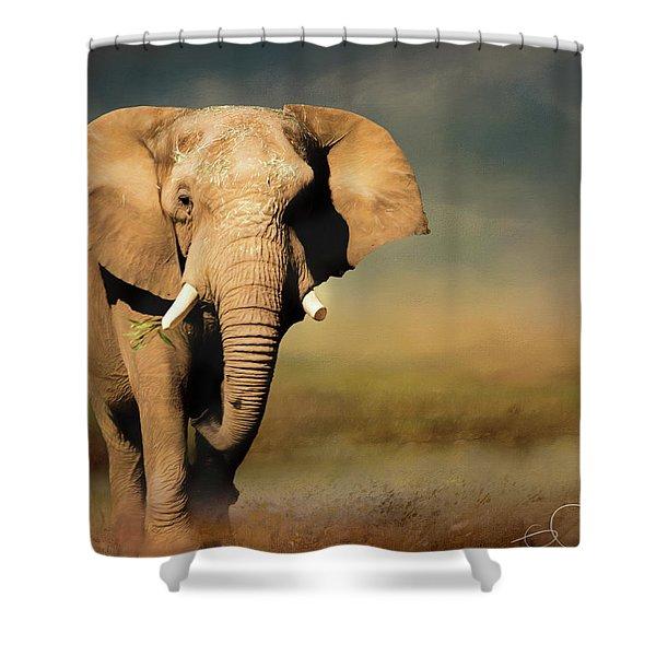 African Elephant Shower Curtain